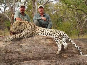 leopard-hunt-zimbabwe-19